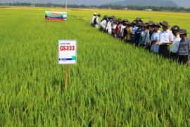 Ký kết hợp tác phát triển nông nghiệp nông thôn giữa thành phố Hồ Chí Minh