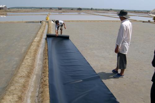 Ban hành định mức kinh tế, kỹ thuật tạm thời xây dựng mô hình sản xuất muối sạch