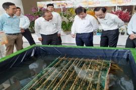Hợp tác xã Nông nghiệp Công nghệ xanh Bình Minh