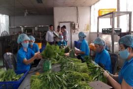 Hợp tác xã Nông nghiệp Sản xuất Thương mại Dịch vụ Phước An